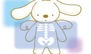 骨づくりがアトピー克服への近道【アトピー改善ノウハウ】