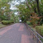 清々しい気持ちで公園を歩く~プラズマコースの後~