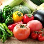 れのあの食材の選び方!これからの季節に食べたい野菜。